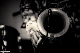tikis del ritmo-8